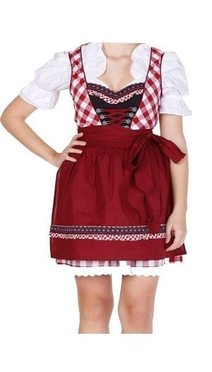 Dirndl Set Black with Red Embroidery Classic